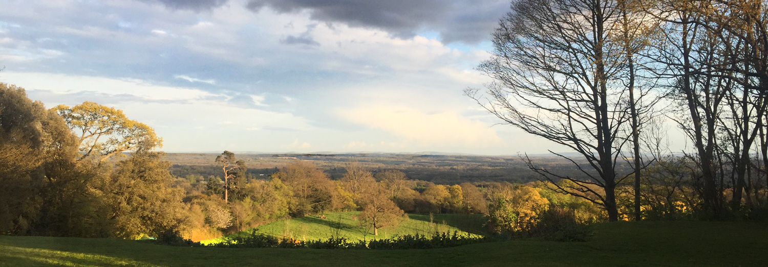 Evening view from the Leith Hill Place Terrace